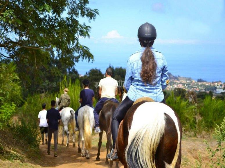 Ruta a caballo para principiantes