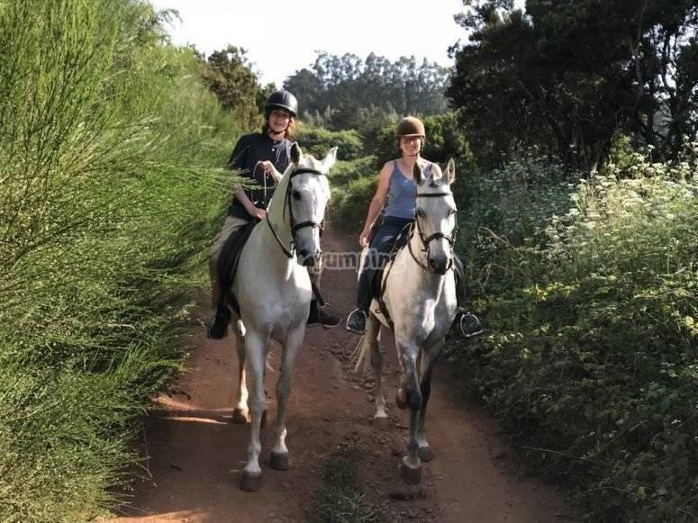 Salida a caballo familiar