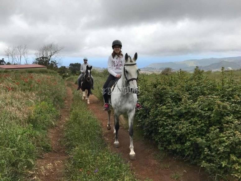Paseando por el campo con caballos