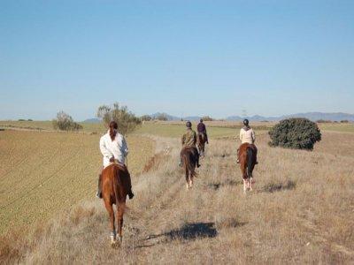 Hipica Fuentemontes Rutas a Caballo