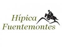 Hipica Fuentemontes Campamentos Hípicos