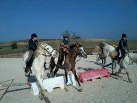 actividades de equitacion