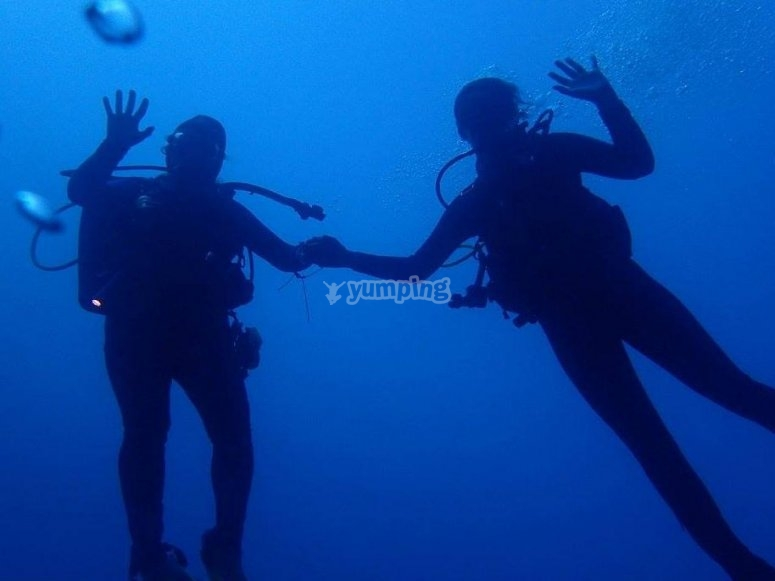 Divers holding hands