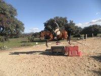 saltando obstaculos