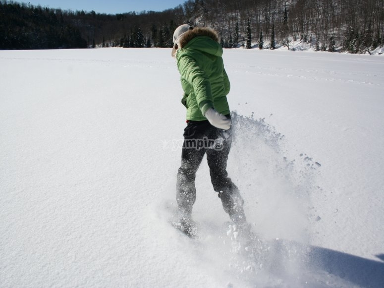 Raquetas de nieve en Bielsa
