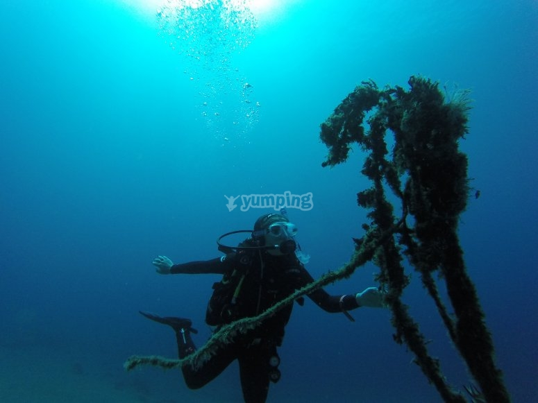 Diving session for two