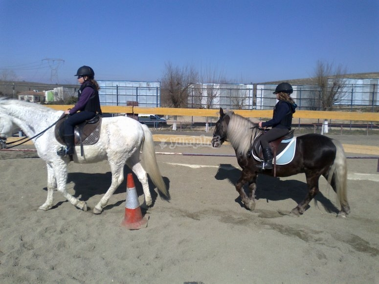 Xanadu pista equestre