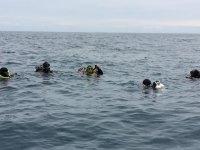 浮潜戳他的头进入地中海家庭洗礼潜水