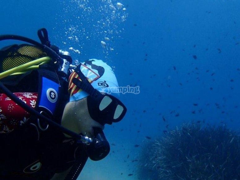 belleza marina