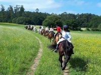 Rutas a caballo por la campiña