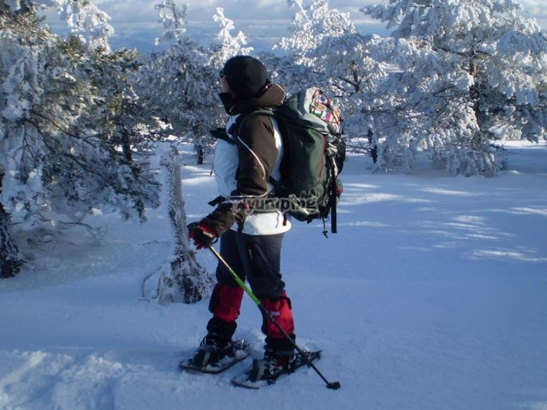 Snowshoeing route in Taüll mountain