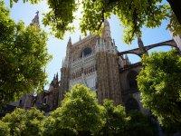 参观Alcazar Cathedral Giralda Sevilla 2:30小时