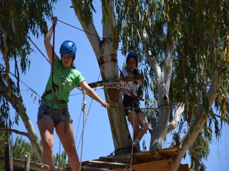 Tour between trees in Berlanga