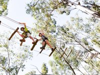 Multi-adventure circuit in Berlanga
