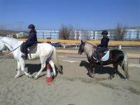 Équitation à partir du centre hipic