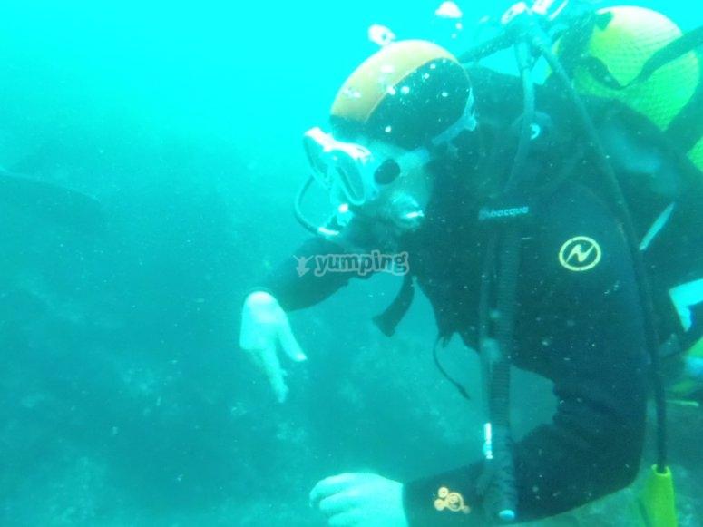 Participando en la inmersión