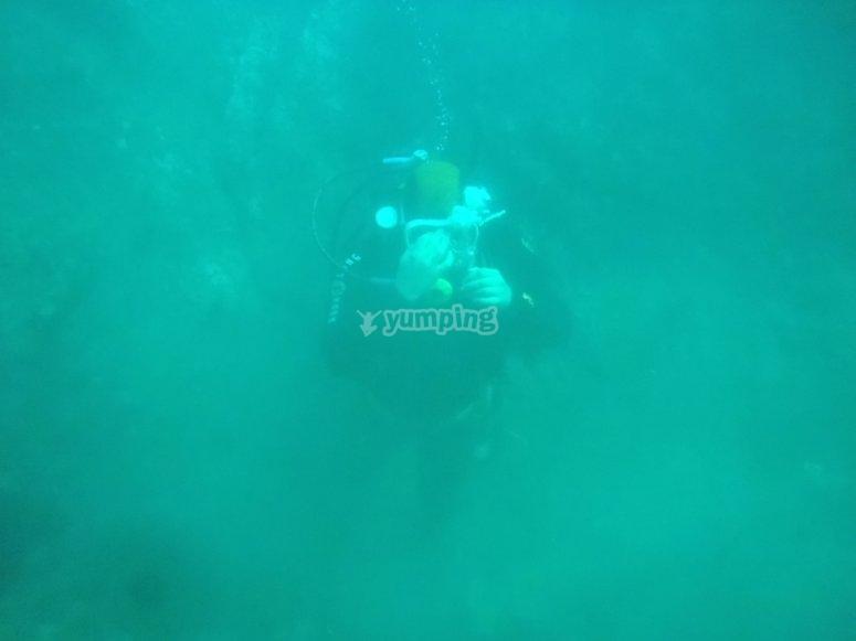 Immersioni nell'estuario del Viveiro