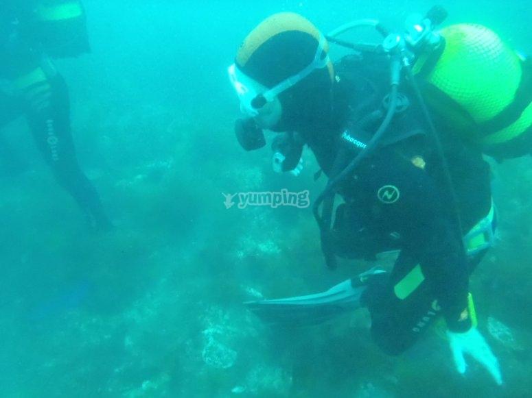 在全浸,我们将做5次潜水潜水课程AOWD