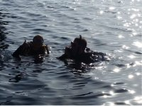 Divers on the surface at sunset
