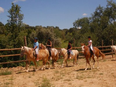 Intensive Horse Riding Camp Without Accommodation