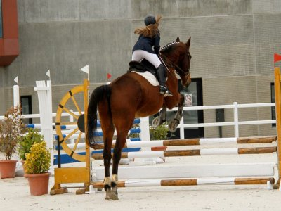 Bono de 10 clases de salto a caballo en Ortigosa