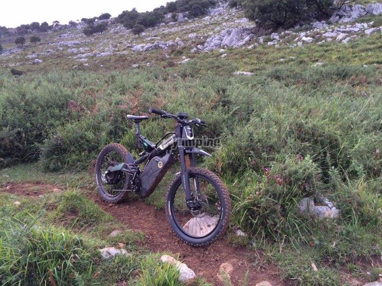 Bultaco Brinco en el campo