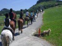 骑行在Donosti附近的乡村