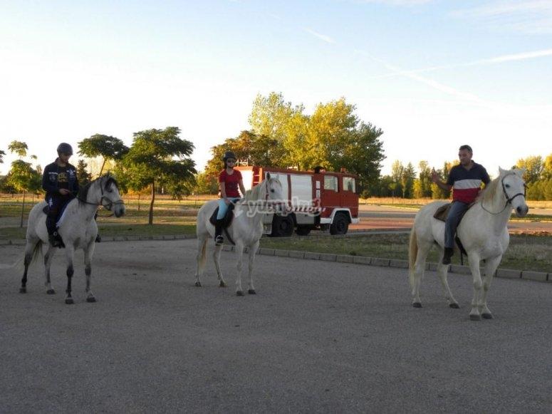 Subidos en tres caballos