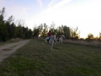 Cabalgando en caballos blancos