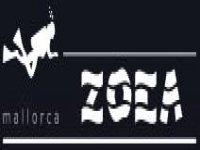 Mystery Tours Paseo en Globo