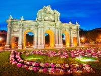 Single party and guided tour in Madrid