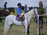 Niño montando a caballo