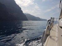 在Mogán周围乘船游览鲸类