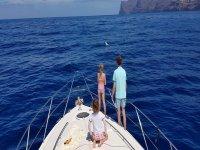 Peques从船上观看海豚