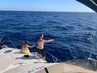目睹海豚在船上游泳