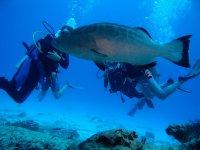 Immersioni lungo la Costa Brava