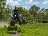 Ruta en quad por bosque
