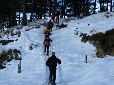 Makalu Aventura Raquetas de Nieve