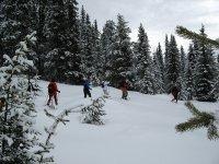 带雪鞋的带导游的短途旅行