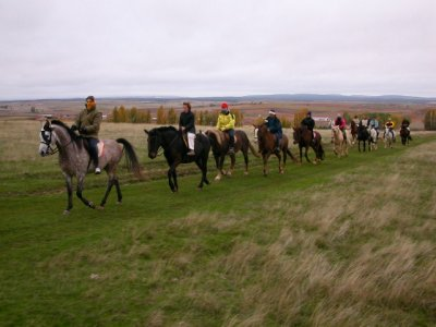 Horseback riding 1 hour, archery and meal