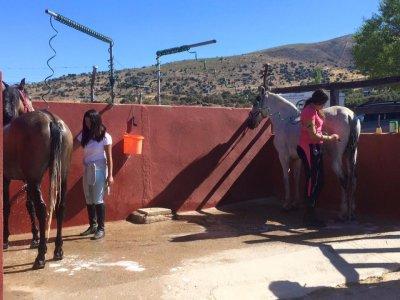 Clase de monta y tour por hípica en Segovia niños