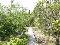 Paseos en los jardines