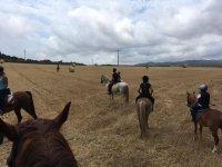 Tutto a cavallo