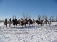 Caballos sobre la nieve
