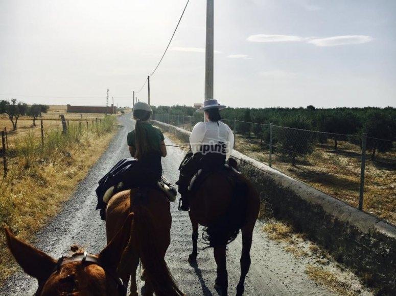 Ruta a caballo con desayuno en Hinojosa del Duque
