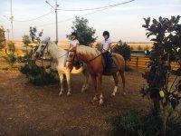 Paseo a caballo en familia
