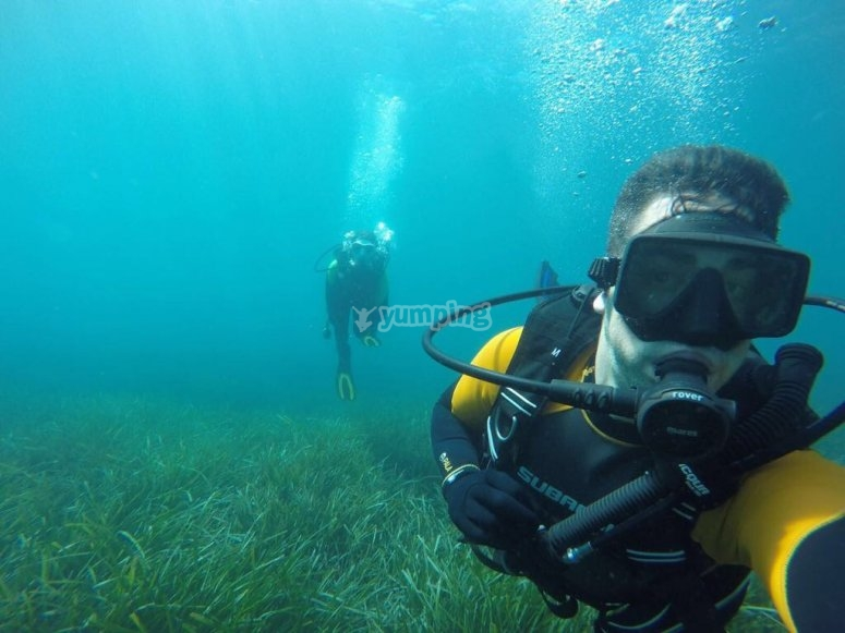 潜水课程浸入