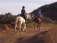 Horse riding through the countryside