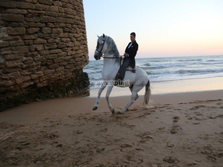 Ruta a caballo para experimentados