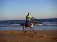 Riding a horse through the seashore